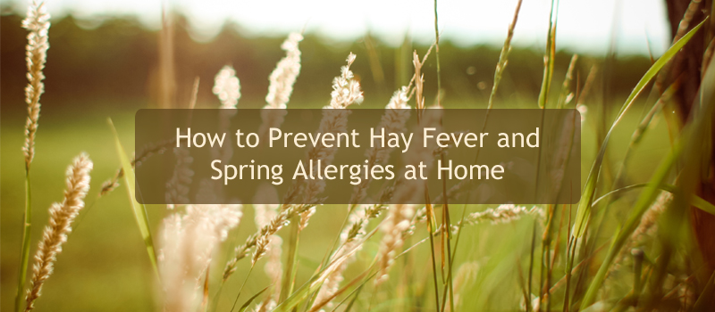 How To Prevent Hay Fever Amp Spring Allergies At Home At